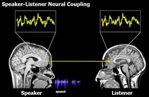 Speaker Listener Neural Coupling